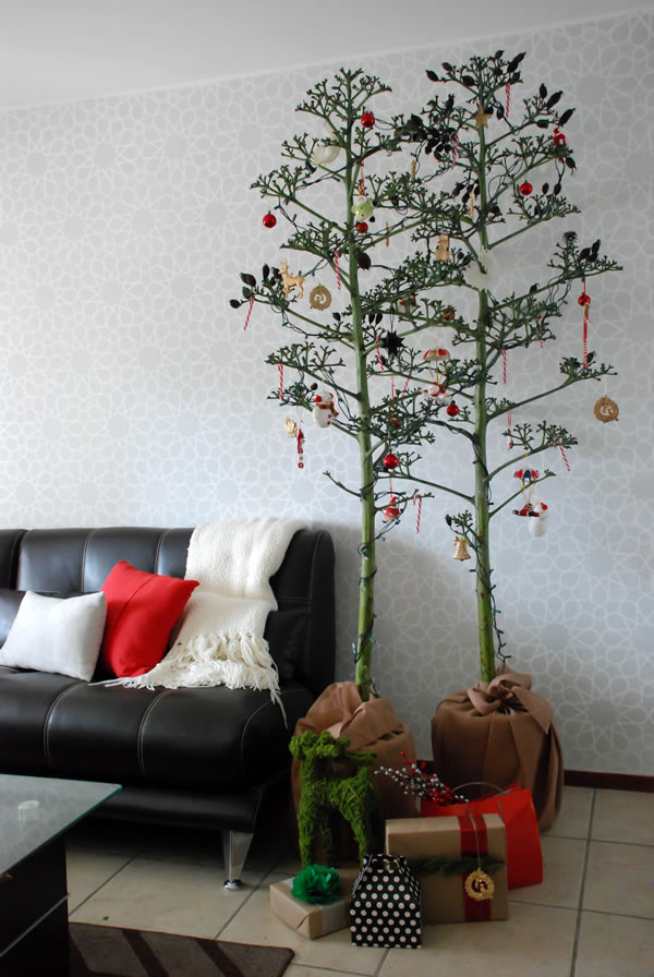 quiote christmas tree